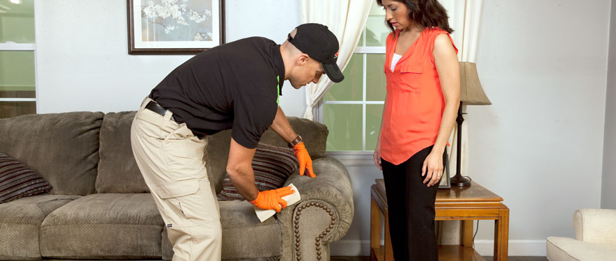 Fredericton, NB carpet upholstery cleaning