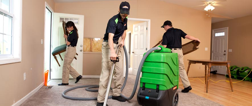 Fredericton, NB cleaning services